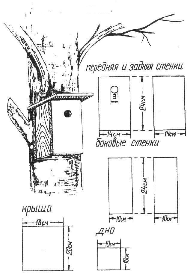 Домик для воробьев своими руками пошаговая инструкция с размерами 25