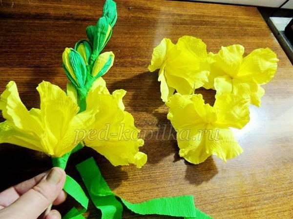 Гладиолусы из гофрированной бумаги своими руками пошаговое фото