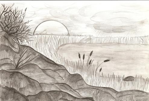 Рисованные природ карандашом