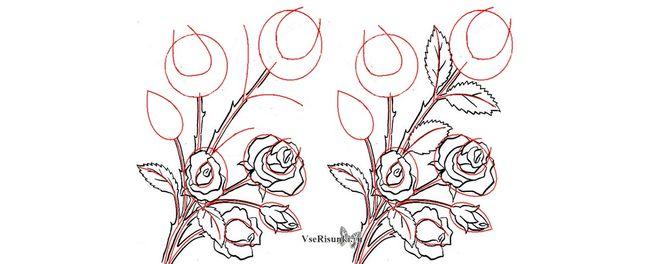 Роза рисунок красками поэтапно 17