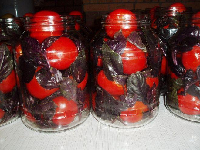 базилик зиму рецепты фото
