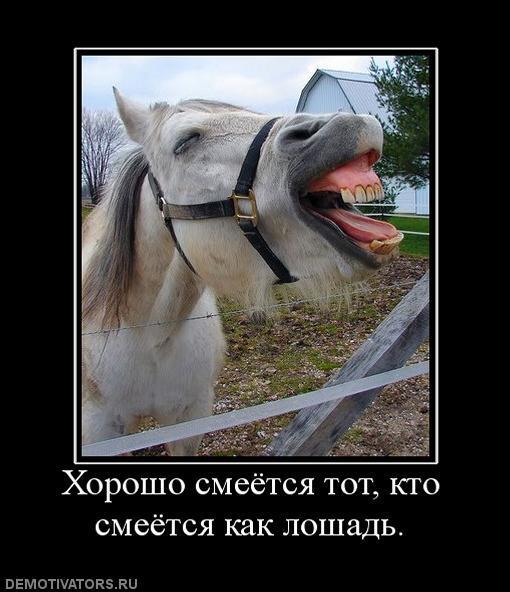 pochemu_devushka_nazivaet_svoego_muzhchi
